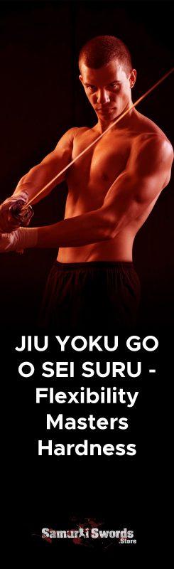 JIU YOKU GO O SEI SURU - Flexibility Masters Hardness.
