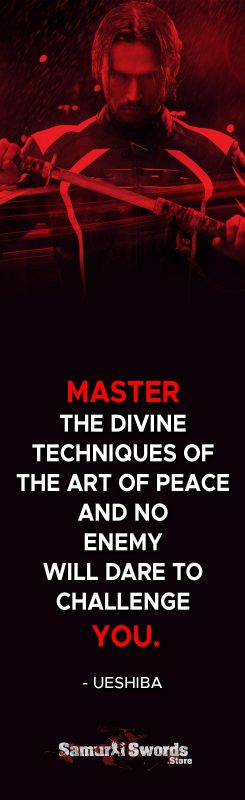 Master the divine techniques of the Art of Peace and no enemy will dare to challenge you. - Morihei Ueshiba