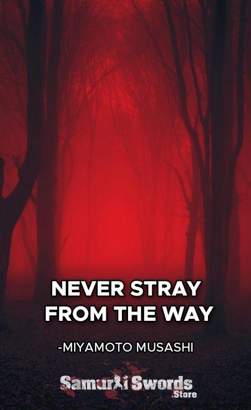 Never stray from the Way. - Miyamoto Musashi