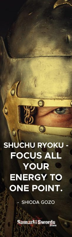 SHUCHU RYOKU - Focus all your energy to one point. - Shioda Gozo