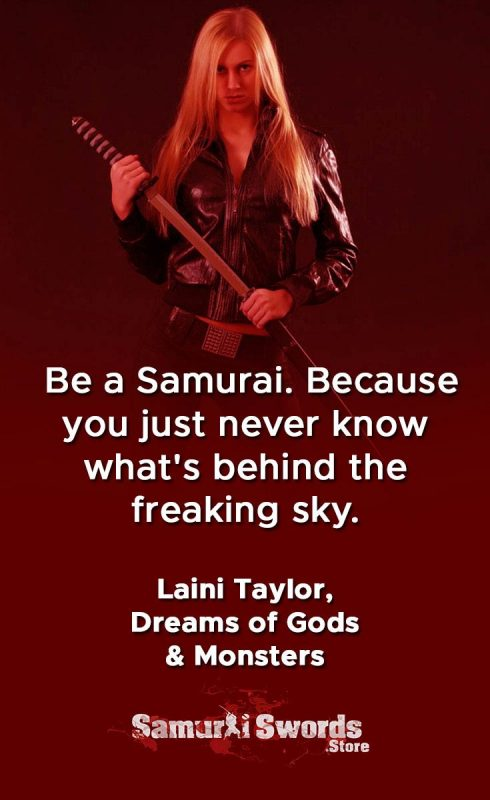 Be a Samurai. Because you just never know what's behind the freaking sky. - Laini Taylor