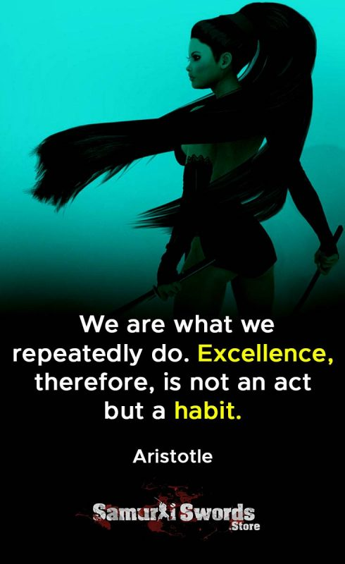 We are what we repeatedly do. Excellence